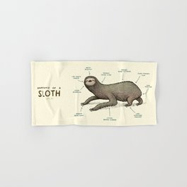 Anatomy of a Sloth Hand & Bath Towel