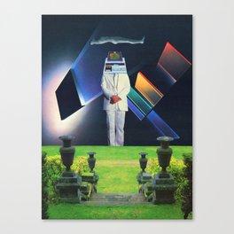 Meta-Pansophic Canvas Print