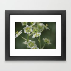 out camping Framed Art Print