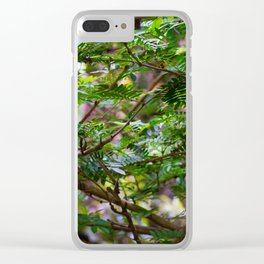 Branches of Spring Clear iPhone Case