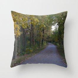 Illinois Autumn Trail Throw Pillow