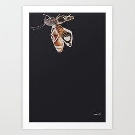 Brown Moth Art Print