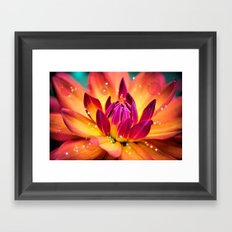 Cure for a Rainy Day Framed Art Print