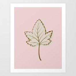 Brown Sycamore Leaf Art Print
