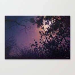 Moonlight Sonata (Tree and Reed Plant Silhouette) Canvas Print