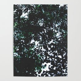 Tops of the leaves of trees silhouettes. Poster
