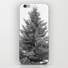 B&W White Spruce iPhone Skin