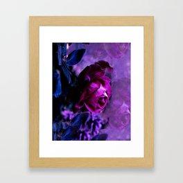 Purple Rose Garden Framed Art Print