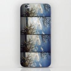 floating trees iPhone & iPod Skin