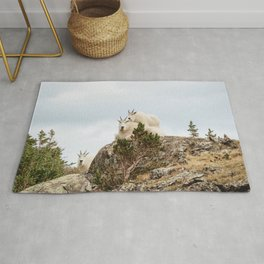 Three Ami-Goats // Scenic Hike Animals Photograph Colorado Wildlife National Park Mountain Goats Rug
