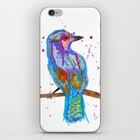 coco iPhone & iPod Skins featuring coco by Laurie Art Gallery