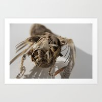 birdy Art Prints featuring Birdy by Vanitylife