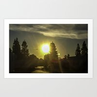 airplanes Art Prints featuring Airplanes & Sunshine  by Liese May Photography