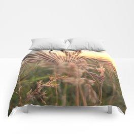 Peel sunset lll - sunset graphic Comforters