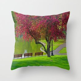 The park  Throw Pillow