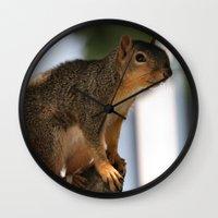 death cab for cutie Wall Clocks featuring Cutie! by IowaShots