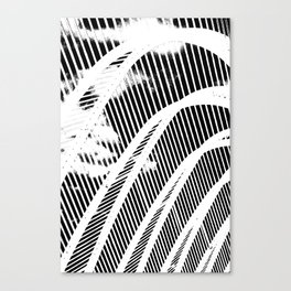 Fish bones Canvas Print