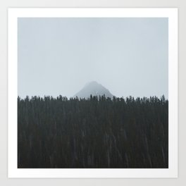 Minimalist Landscape Photo Tall Trees Mountain In The Background Art Print