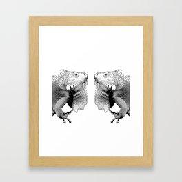 Iguanas (animals) Framed Art Print