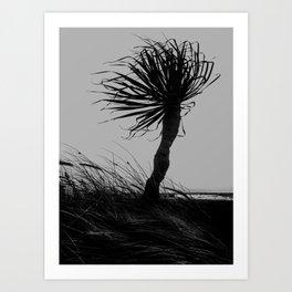 wind land Art Print