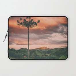 Araucaria Sky Laptop Sleeve