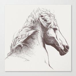 Cheval Canvas Print
