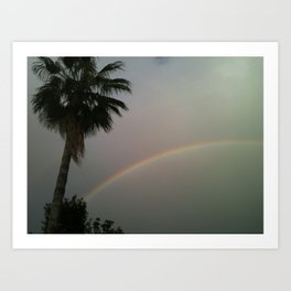 Palm Tree Sky Rainbow Art Print