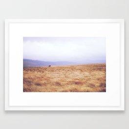 Mini Horse Framed Art Print
