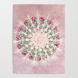 Cactus mandala - blush concrete Poster