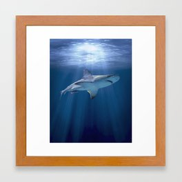 Cruising Shark Framed Art Print