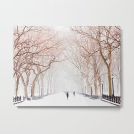 The Tree Path in Snow (Color) Metal Print