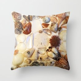 Urchin with Sea Glass and Sand Dollar Throw Pillow
