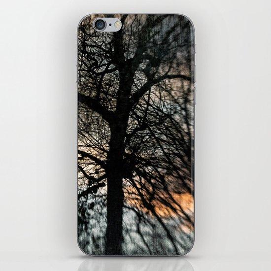 Bleak Winter Sunset iPhone & iPod Skin