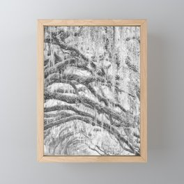Arching Limbs Framed Mini Art Print