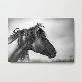 Horse in Sepia Metal Print