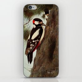 Kuhnert, Friedrich Wilhelm (1865-1926) - Wild Life of the World 1916 v.1 (Spotted Woodpecker) iPhone Skin