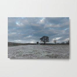 Frosty Fields - II Metal Print