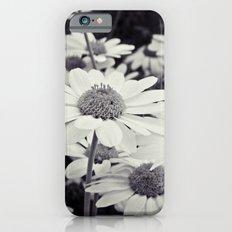 Daisy White iPhone 6 Slim Case