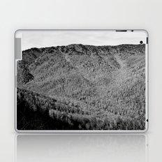 Winter Mountains Laptop & iPad Skin