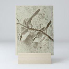 Slaty-headed Scimitar Babbler, pomatorhinus schisticeps10 Mini Art Print