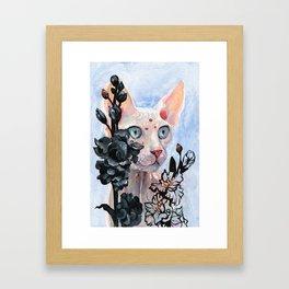 Gladioulus Framed Art Print