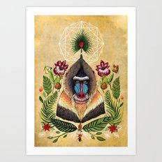 Majestic Mandrill Art Print