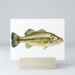 Largemout Bass Mini Art Print