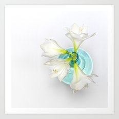 Wonderful white Amaryllis... Art Print