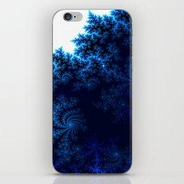 Winter Snowflakes iPhone Skin