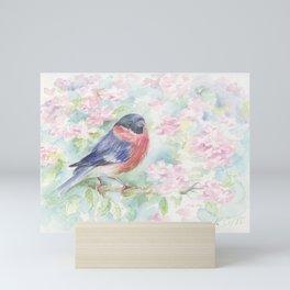 Wildlife Singing bird Spring scene Bullfinch in the blossom Mini Art Print