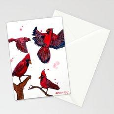 Cardinal Study Stationery Cards