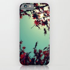 Autumn's Delight Slim Case iPhone 6s