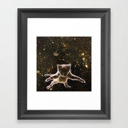 Kitten. In. Space. Framed Art Print