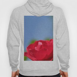 Red Rose Blue Sky Hoody